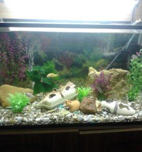 аквариум 112 литров