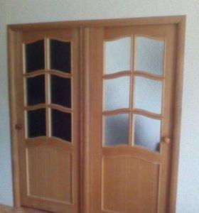Две двери 200/80