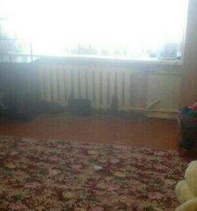 Комната, 21.9 м²