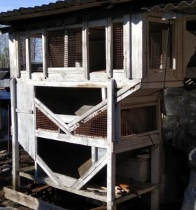 Мини-ферма для кроликов