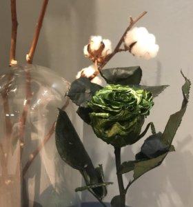 Зелёная роза металлик в Колбе  премиум 28 см