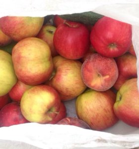 Яблоки Сербия