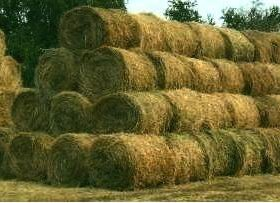 Участок, 4000 сот., сельхоз (снт или днп)
