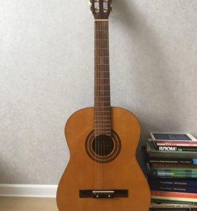 Гитара Martinez FAC-503