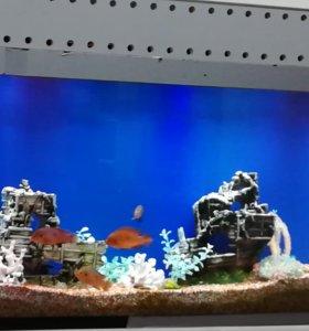 Корабль в аквариум