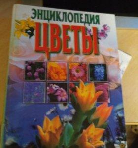Энциклопедия 2003г. выпуска