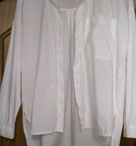 Рубашка блузка белая хлопок Ostin