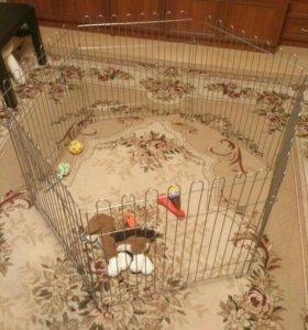 Вольер для щенков и собак мелких пород
