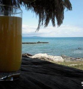 Отдых в Абхазии. Море с калитки