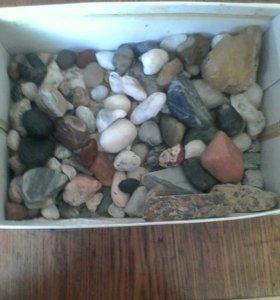 Продаю колекцию камней