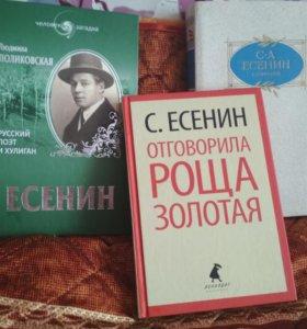Серия книг про Сергея Есенина и его творчество