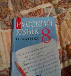 Русский язык практика 8 класс