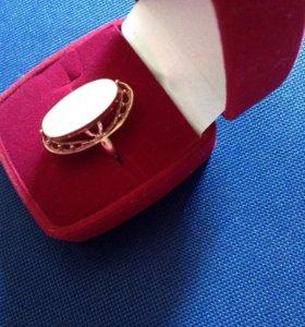 Золотое кольцо 18-19