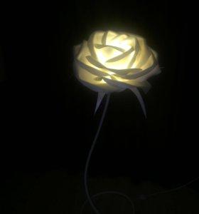 Ростовые цветы, ночники, торшеры.