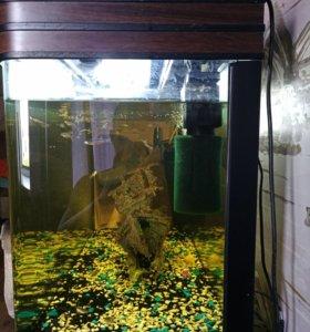 Продам аквариум 180 литров