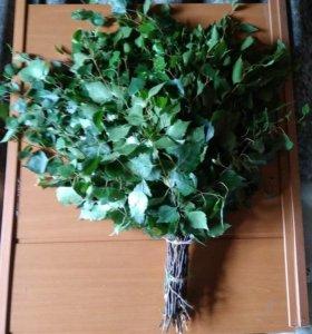 Веники берёзовые в баньку (свежие)
