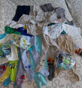 Колготки, трусы, носки 1-2 года