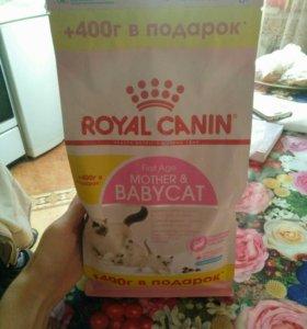Роял конин для мамы и  котят с 1до 4