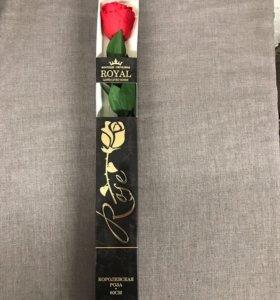 Живая долговечная роза в коробке