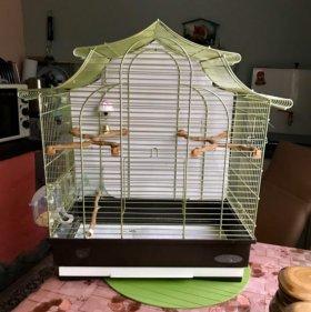 Клетка для попугаев (Италия)