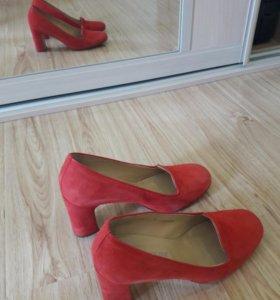 Туфли терволина