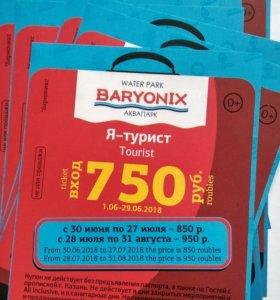Билеты в Барионикс Аквапарк