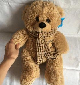 Медведь новый