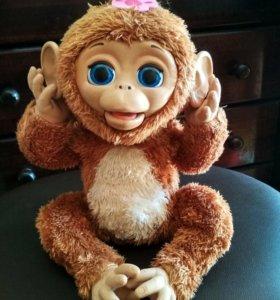 Интерактивная смешная обезьянка