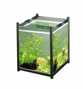 Аквариум куб (акваэль)