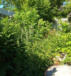 Помощь на огороде (разовая работа)