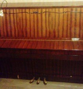 Пианино-клавесин Аккорд