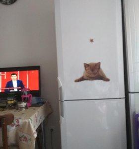 Холодильник б/у BEKO на дачу