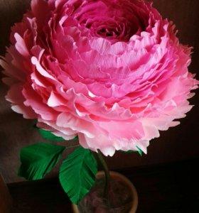 Ростовые цветы, большие розы
