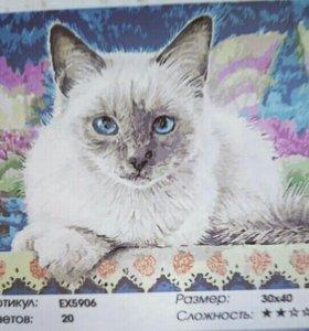 Сиамская кошка (картина по номерам)