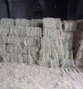 Тюкованное сено, солома