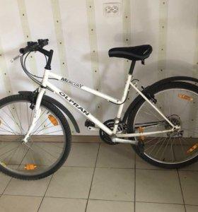 Велосипед горный Mercury Olpran