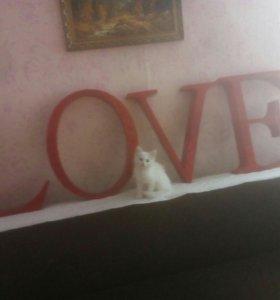 "Обьемное"" Love"""