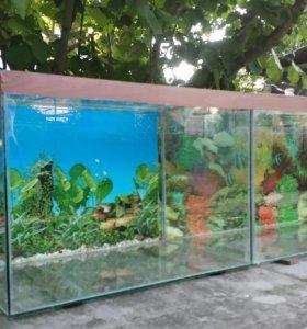 2 аквариума 110л, 80л