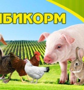 Кормовые добавки для с/х животных и птицы