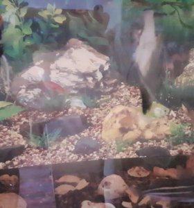 продается аквариум 110 литров