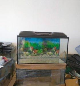 75л доставим новый аквариуи
