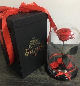 Роза в колбе Rozalini
