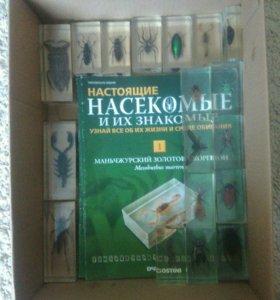 Коллекция насекомых(deagostini)