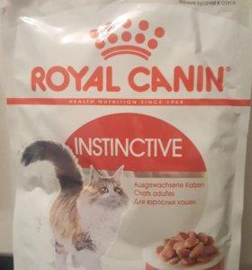 Роял канин корм для кошек