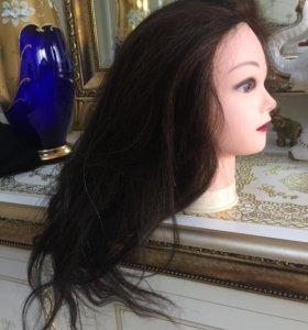 Голова парикмахерская