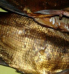 Рыба хол.копчения(Синец),рыбный фарш