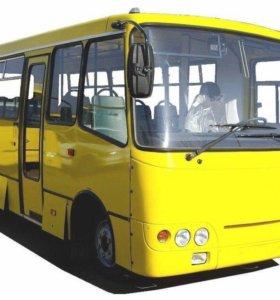 Водитель на автобус Богдан