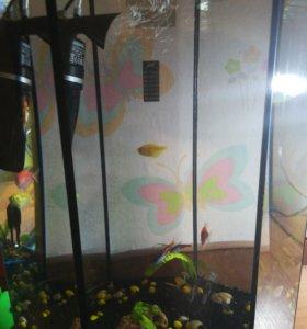 Рыбки аквариумные. Весь аквариум продаем!