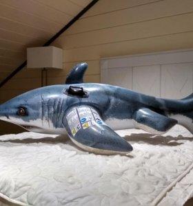 Надувная акула для плавания