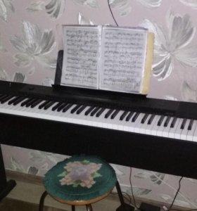 Электронное пианино|Синтезатор CASIO
